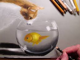 cat and aquarium fish colored pencil drawing jasmina susak