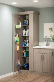 Cabinets In Laundry Room by Laundry Room Storage System Lux Garage U0026 Closet