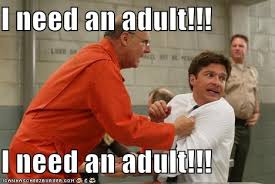 I Need An Adult Meme - image 222529 i need an adult know your meme