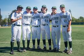 baseball defeats los altos 5 1 on senior night u2013 the viking magazine
