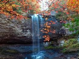 6 places fall color weekend buckhead ga patch
