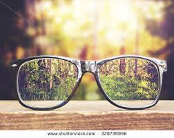 bench spectacles spectacles stock images royalty free images vectors shutterstock