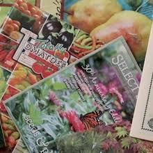 vegetable gardening discussion forum dave u0027s garden
