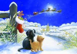 christmas cards sale charity christmas cards for make a wish foundation uk make a wish uk