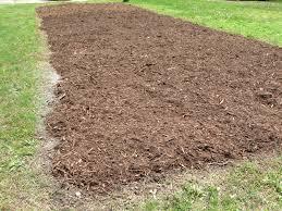 Mulching Vegetable Garden by Vegetable Garden Mulch Soil Preparation Vegetable Garden Mulch