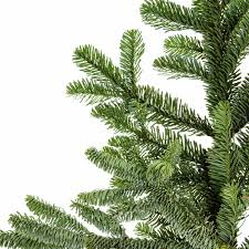 the 10 best real tree species the family handyman