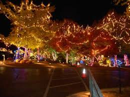 a beautiful christmas lighting of the moon river grounds picture