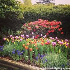 beautiful flower garden design plans full sun flower bed ideas