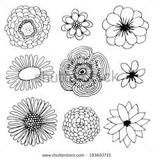 Flower Drawings Black And White - best 25 hand drawn flowers ideas on pinterest wall drawing