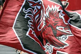 Gamecock Flag Tight End Kelvin Rainey Is Transferring From South Carolina
