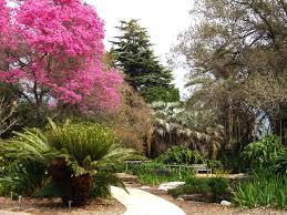 botanical gardens in los angeles design ideas top on botanical