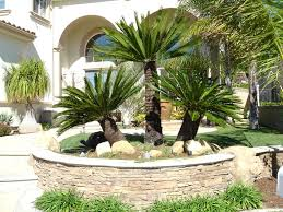 Landscaping Ideas For Florida by Landscaping Ideas For Front Yard Florida Small Yards Green And
