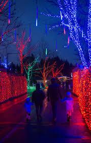 zoo lights portland oregon photos walk through a wild winter wonderland at zoo lights katu
