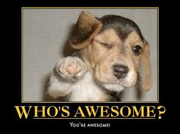 You Are Awesome Meme - who s awesome you re awesome cute humor lol meme humor