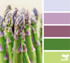 1159 best z color for colors images on pinterest colors color