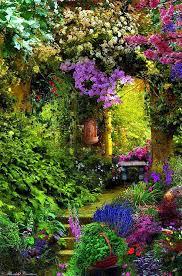 95 best jardin images on pinterest flowers landscaping and plants