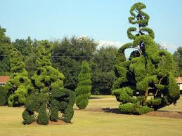 Botanical Gardens South Carolina Here Are The 13 Most Beautiful Gardens You Ll See In Sc
