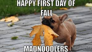 Fall Memes - first day of fall 2015 memes funny photos jokes