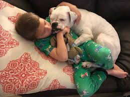 Nonverbal Boy And Deaf Dog Unbreakable Bond Care