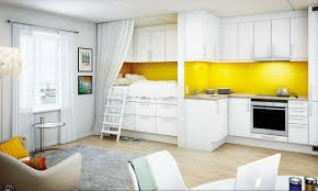 perfect modern kitchen of studio apartment also glossy wood