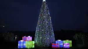 christmas lights spectacular at hunter valley gardens