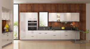 euro style kitchen cabinets european style kitchen cabinets home design ideas and pictures