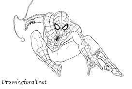 draw spider man drawingforall net
