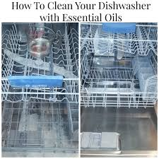 How To Clean And Oil by How To Clean The Dishwasher Dishwashers Cleaning And Oil