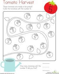 coloring 5 tomato harvest worksheet education com