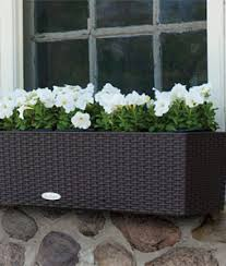 8 automatic plant watering systems to make herb gardening easier