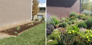 north american native plant society how one neighborhood saved millions of gallons of water with