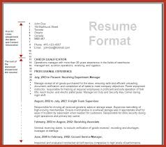 The Standard Resume Format For by Standard Resume Format U2013 Inssite
