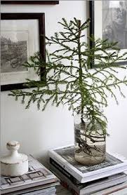 mini pine tree scandinavian inspired rustic