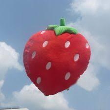 Strawberry Home Decor Strawberry Home Décor Pillows Ebay
