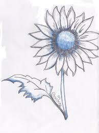 fiori disegni arte semplice e poi il disegno dei fiori visti anche attraverso l