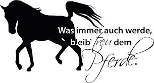 pferde spr che wandtattoo für mädchenzimmer spruch treu pferde pferd mädchen