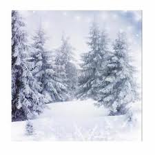 forest backdrop 10x10ft vinyl winter snow forest backdrop studio photography