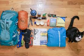 Colorado traveling with cats images Prepare your cat for a life of travel adventure cats jpg