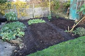 vegetable garden planning 5 steps to a highly productive garden