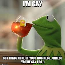 Too Gay Meme - but thats none of my business meme imgflip