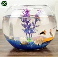 Fish Tank Desk by Aquarium Fish Tank Aquarium Clear Glass For Your Desk Decor Mini