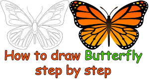 how to draw a butterfly step by step for beginners for kids
