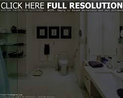 accessories cool wheelchair accessible bathroom design worthy