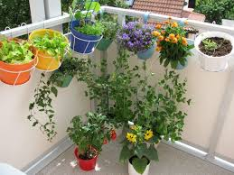 Ideas For Balcony Garden Balcony Flower Garden Ideas Outdoor Balcony Garden Patio Vegetable