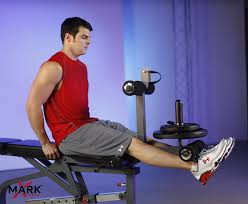 amazon com xmark fid flat incline decline weight bench with leg