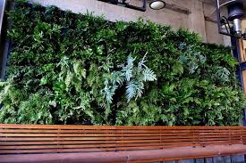 vertical garden naturalness anywhere home dezign