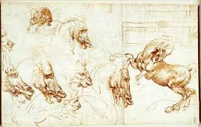 leonardo da vinci from cats to eight of his best drawings