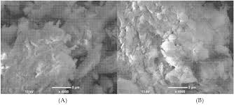 adsorption of heavy metal onto the materials prepared by biomass
