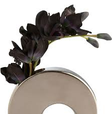 black orchid flower bbb business profile the black orchid flower shop