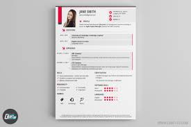 Perfect Resume Format Cv Maker Professional Cv Examples Online Cv Builder Craftcv